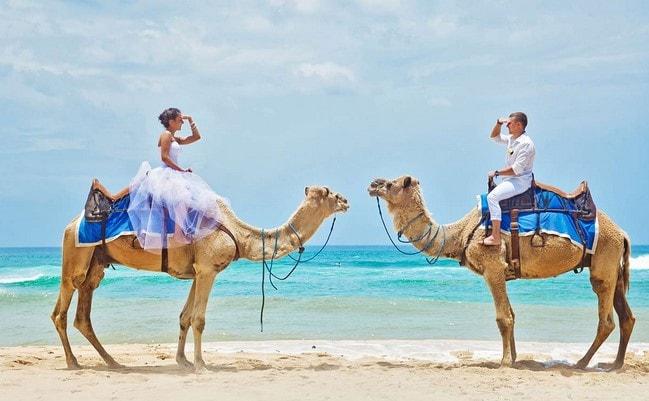 harga bali camel safari
