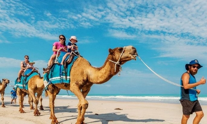 serunya wisata di bali camel safari
